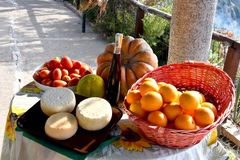 Delicious food, specialties of Calabria. Specialties of the region Calabria, bergamot, pecorino cheese, pumpkin, tomatoes, red wine and oranges placed on a table stock images
