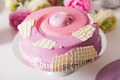 Delicious french cake Stock Images