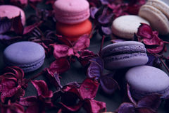 Delicious French dessert macarons Royalty Free Stock Photography