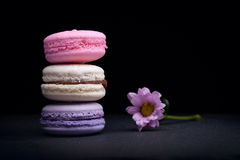 Delicious French dessert macarons Stock Photography