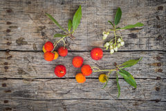 Delicious fresh arbutus fruits. On a wooden table Royalty Free Stock Photos