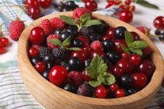 Delicious fresh berries in a bowl closeup. horizontal Stock Image