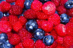 Delicious fresh berries. A nice delicious fresh berries Royalty Free Stock Image