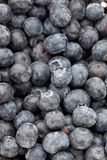 Delicious fresh blueberries Royalty Free Stock Photos