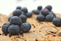 Blueberry in the snow. Delicious and fresh blueberries in the snow Stock Images
