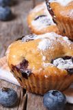 Delicious and fresh blueberry muffins macro. vertical. Delicious and fresh blueberry muffins on wooden table macro. vertical royalty free stock image