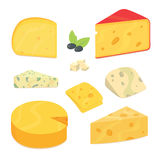 Delicious fresh cheese variety icon flat set isolated vector illustration. Eps10 Royalty Free Stock Photography