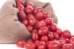 Delicious fresh cherry tomatoes royalty free stock photo