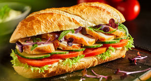 Delicious fresh chicken baguette with salad royalty free stock images