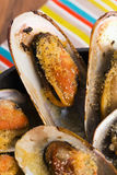 Delicious Fresh Clams Royalty Free Stock Photo
