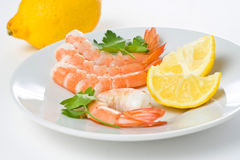Delicious fresh cooked shrimp prepared Royalty Free Stock Photography