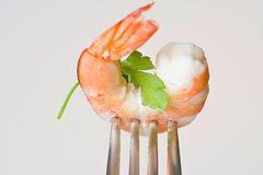 Delicious fresh cooked shrimp prepared Royalty Free Stock Images