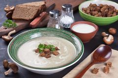 Delicious fresh creamy mushroom soup Stock Image