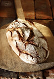 Delicious fresh crusty bread Stock Image