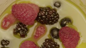 Delicious fresh dessert made of fruits. Close-up - delicious fresh dessert made of fruits and berries assorted - mulberry berry and raspberry. Restaurant menu stock footage
