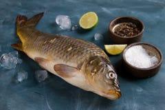 Delicious fresh fish (carp) Stock Photos