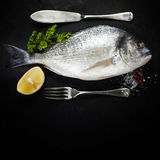 Delicious fresh fish Stock Images