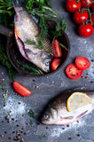 Delicious fresh fish on dark vintage background. Fish with aromatic herbs, spices and vegetables - healthy food, diet or cooking concept Royalty Free Stock Image