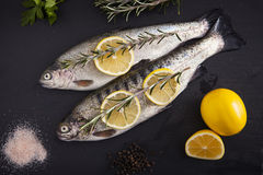 Delicious fresh fish Stock Photos