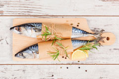 Delicious fresh fish. Stock Photography