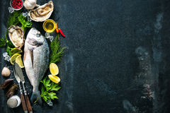 Delicious fresh fish and oysters royalty free stock images
