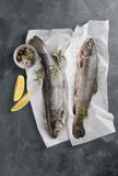 Delicious fresh fish trout Stock Image