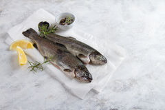 Delicious fresh fish trout Stock Photos
