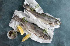 Delicious fresh fish trout Stock Photo