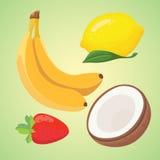 Delicious fresh fruit vector illustration. Delicious fresh fruit collection vector Royalty Free Stock Image
