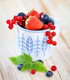 Delicious fresh fruits in the white and blue cup. On the table Royalty Free Stock Photo