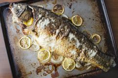 Tasty grilled carp fish with slices of lemon,sour cream on top,served on kitchen tray.Top view stock images