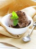 Delicious fresh homemade chocolate ice cream Stock Photo