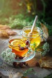 Delicious fresh honey and a Cup of healthy tea with lemon and rose hips on a wooden table. Selective focus. Stock Image