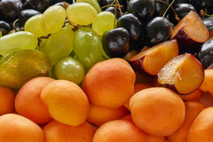Delicious and fresh mixed  fruit Stock Photo