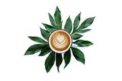 Delicious fresh morning cappuccino coffee in a mug with a flower pattern. Nearby lie the leaves of the plant for Royalty Free Stock Photos