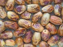 Delicious fresh organic dates over white background Stock Image