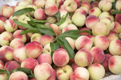Delicious fresh peaches Stock Photo