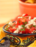 Delicious fresh pico de gallo salsa and chips Royalty Free Stock Image