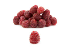 Delicious fresh raspberries. One in front and a pile in the back, over white background Royalty Free Stock Images