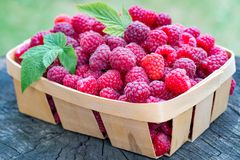 Delicious fresh raspberry in a little wooden basket, on textured. Wood background Stock Photo