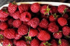 Delicious fresh raspberry in the wooden basket. View Royalty Free Stock Photos