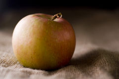 Delicious fresh red apples of seasonal Royalty Free Stock Photography