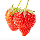 Delicious fresh red Strawberry fruits Stock Photos