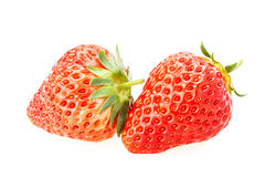 Delicious fresh red Strawberry fruits Stock Image