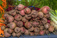 Delicious fresh ripe beetroots. At local fruit and vegetables market Stock Photography