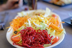 Delicious fresh salad with beet, corn, lettuce, onion, carrot and bean sprouts Stock Images