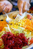 Delicious fresh salad with beet, corn, lettuce, onion, carrot and bean sprouts Stock Photography