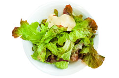 Delicious fresh salad Royalty Free Stock Photography
