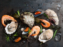 Delicious fresh seafood Royalty Free Stock Photography