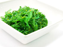 Delicious fresh seaweed salad Stock Images